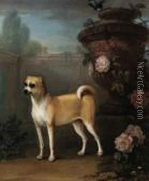 A Pug Beside A Classical Urn Oil Painting - John Wootton