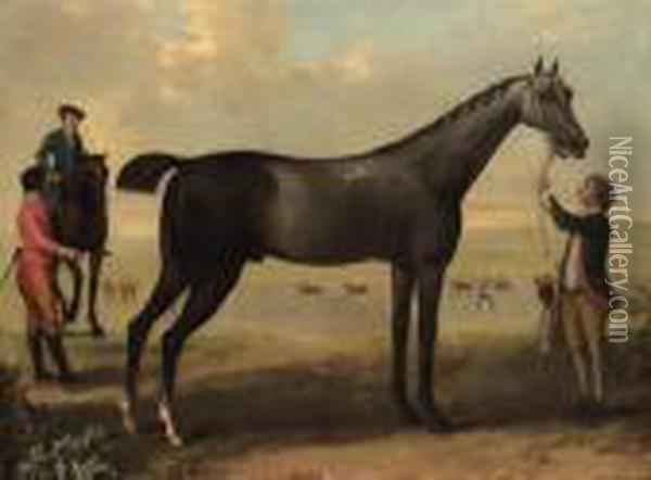 Childers, A Dark Bay Racehorse 