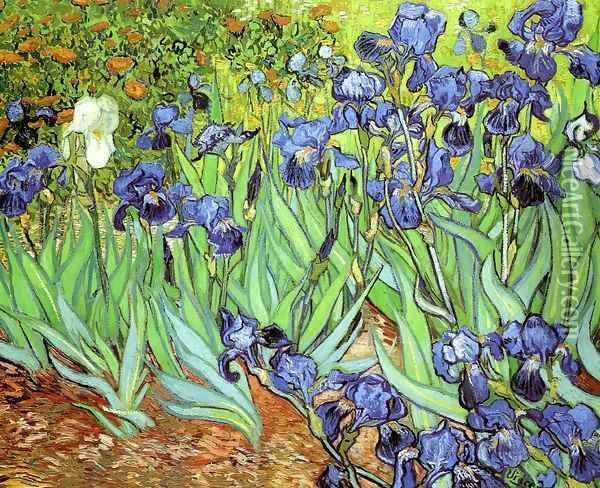 Irises Oil Painting - Vincent Van Gogh