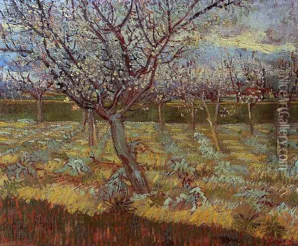 Apricot Trees In Blossom II Oil Painting - Vincent Van Gogh