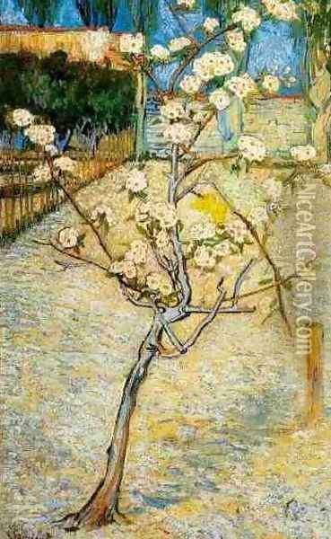 Blossoming Pear Tree Oil Painting - Vincent Van Gogh