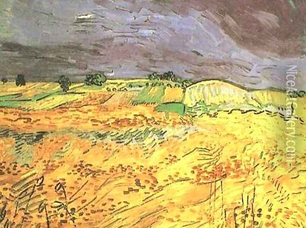 The Fields Oil Painting - Vincent Van Gogh