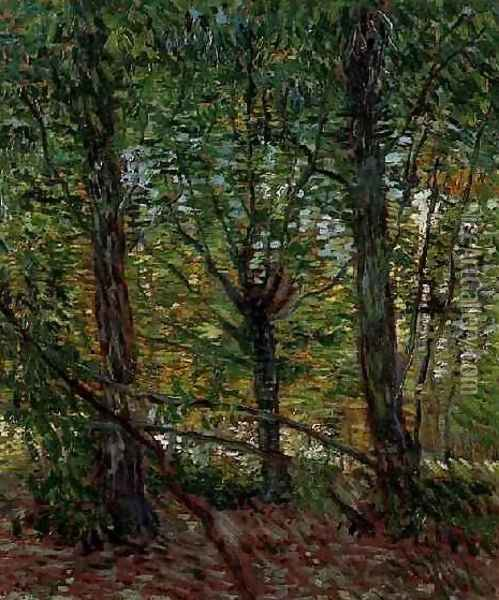 Trees And Undergrowth Oil Painting - Vincent Van Gogh