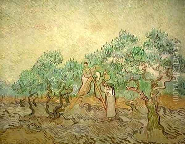 Olive Picking III Oil Painting - Vincent Van Gogh