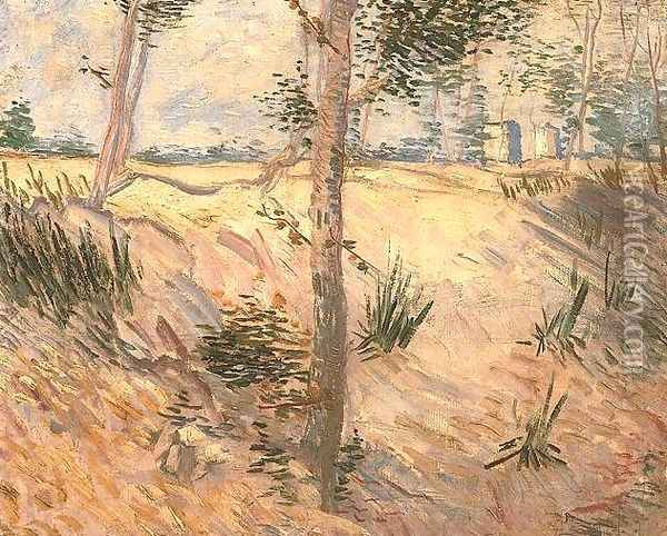 Trees In A Field On A Sunny Day Oil Painting - Vincent Van Gogh
