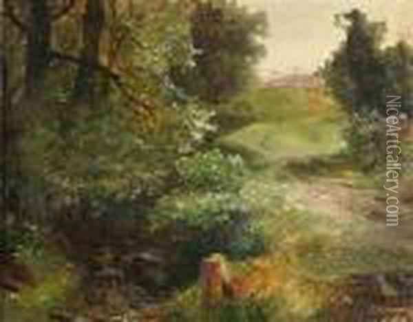 Drivewayalong A Brook In A Summery Landscape Oil Painting - August Albert Zimmermann