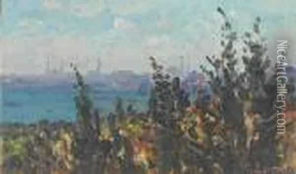 The Golden Horn From Galata,constantinople Oil Painting - Fausto Zonaro