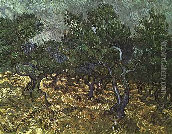 The Olive Grove Oil Painting - Vincent Van Gogh