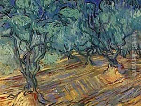 Olive Grove Bright Blue Sky 1889 Oil Painting - Vincent Van Gogh