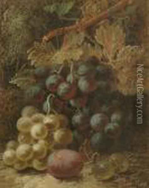 Still Life Of Grapes, Goosberries And A Plum On A Mossy Bank Oil Painting - Oliver Clare