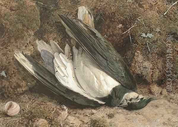 A Fallen Lapwing On A Mossy Bank Oil Painting - William B. Hough