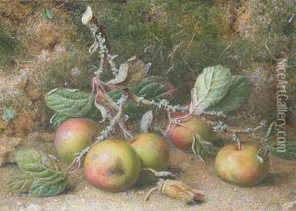 A Still Life Study Of An Apple Bough And A Cobnut, Signed Oil Painting - William B. Hough