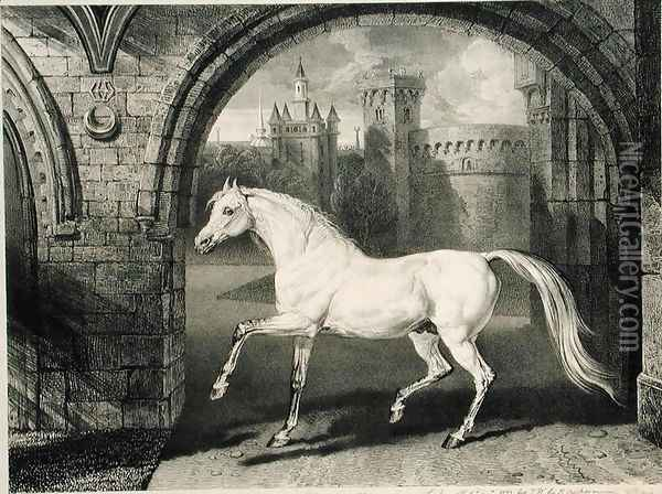 A Persian Horse, from Celebrated Horses, a set of fourteen racing prints published by the artist, 1823-24 Oil Painting - James Ward