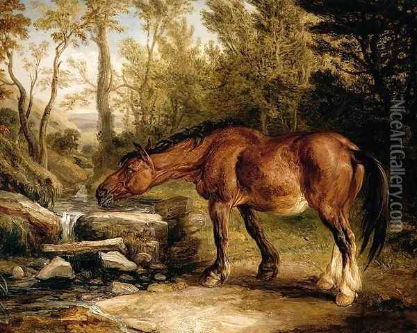 A Horse Drinking at a Stream 1838 Oil Painting - James Ward