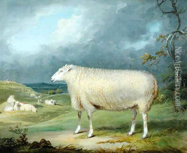 A Border Leicester Ewe Oil Painting - James Ward