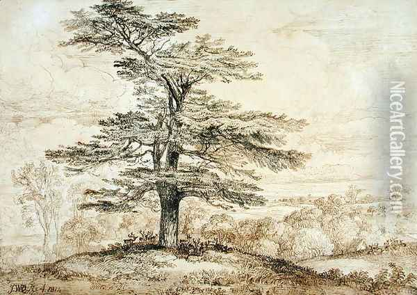 A Cedar on a Rise with a Herd of Deer Grouped Beneath its Shade, 1814 Oil Painting - James Ward