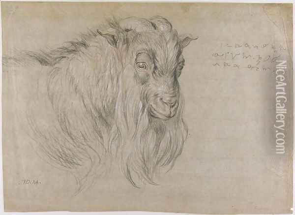Study of the Head of a Ram Oil Painting - James Ward
