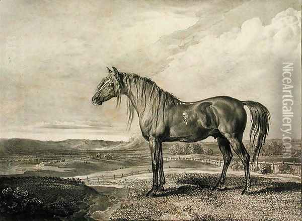 Copenhagen, from Celebrated Horses, a set of fourteen racing prints published by the artist, 1823-24 Oil Painting - James Ward