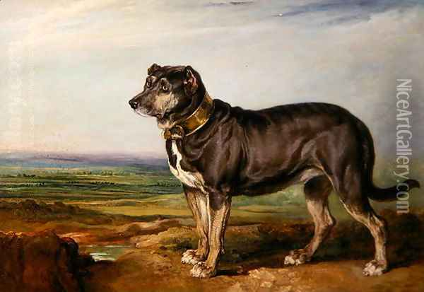 Portrait of Vic, a Spanish Bloodhound, c.1818-20 Oil Painting - James Ward