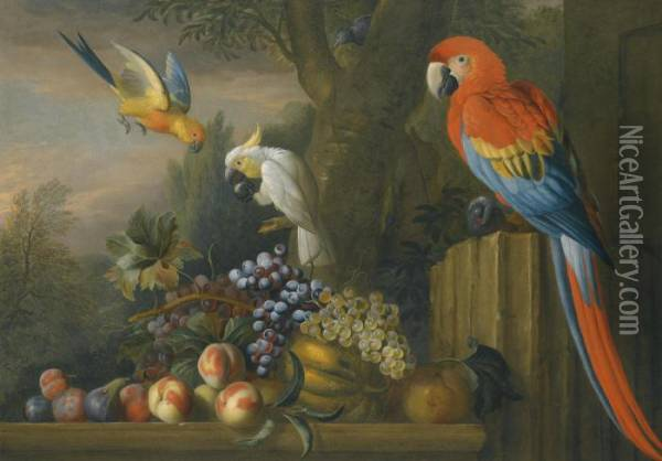 A Still Life With Fruit, Parrots And A Cockatoo Oil Painting - Jakob Bogdani Eperjes C