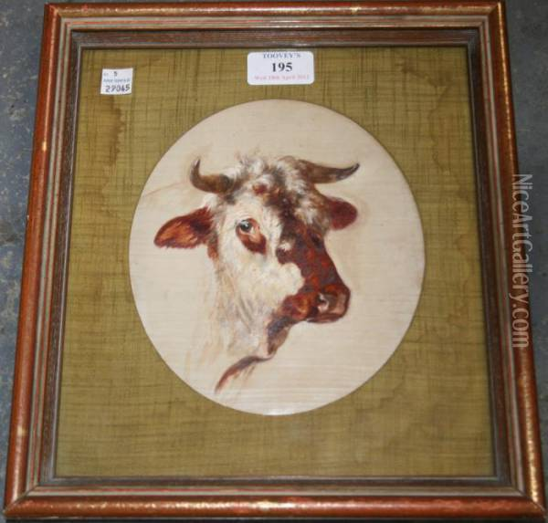 Oval Study Of A Cow's Head Oil Painting - Rosa Bonheur