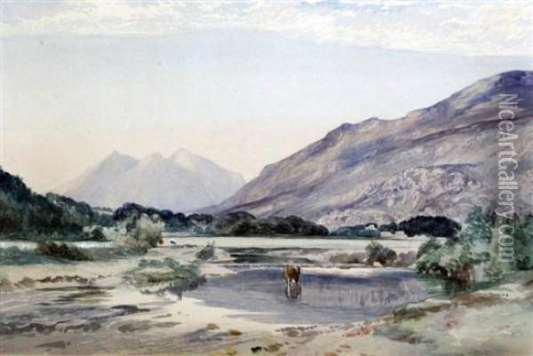 Snowdon From Capel Carig Oil Painting - David Cox