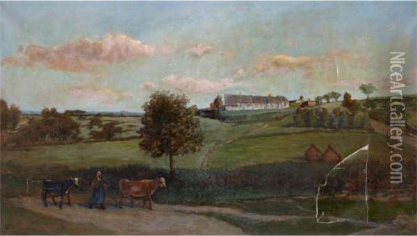 Au Flanc De La Colline 