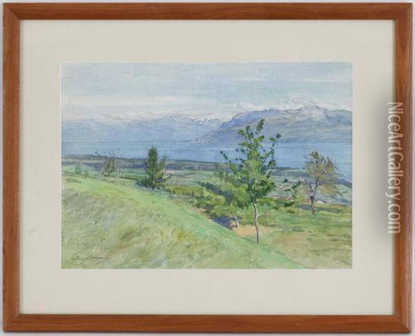 Vue Du Lac Leman Oil Painting - Gustave de Beaumont
