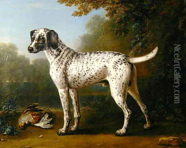 Grey spotted hound, 1738 Oil Painting - John Wootton