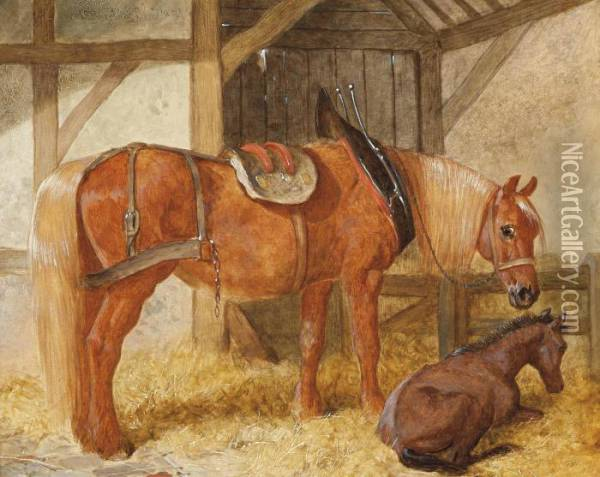 A Mare And Foal In A Loose-box Oil Painting - John Frederick Herring Snr