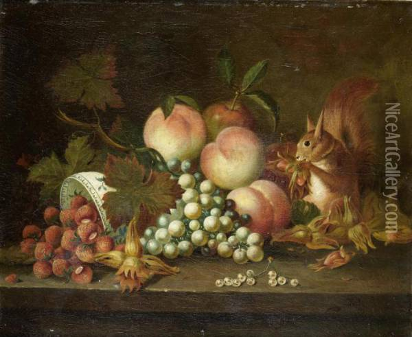 A Squirrel Eating Cobnuts With Strawberries, Grapes And Peaches Oil Painting - William Jones Of Bath