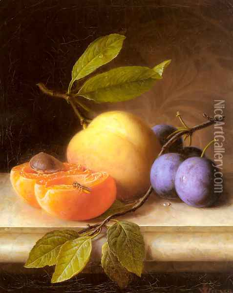 Stilleben Mit Pfirsich Und Pflaumen (Still Life with Peaches and Prunes) Oil Painting - Joseph Peter Wilms