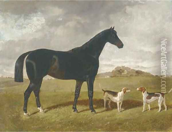 A dark brown hunter with two hounds in a landscape, with Brindle Church, Lancashire, beyond Oil Painting - Henry Woollett