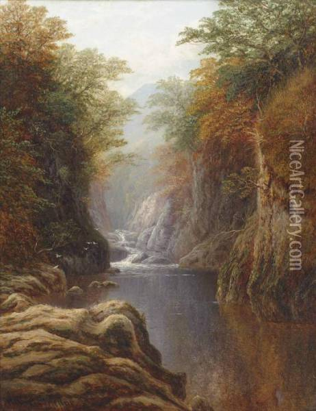 Fairy Glen, North Wales Oil Painting - William Mellor