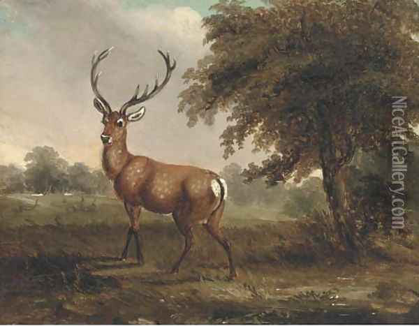 A stag in a landscape Oil Painting - James Ward