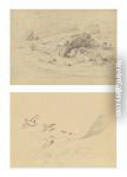 Studies Of Young Tern Oil Painting - Archibald Thorburn
