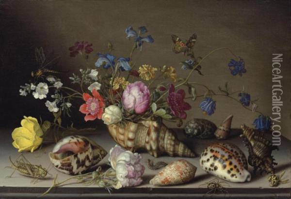 Flowers, Shells And Insects On A Stone Ledge Oil Painting - Balthasar Van Der Ast
