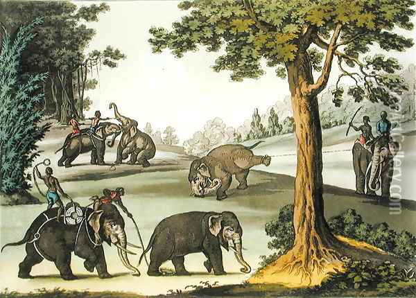 Capturing Elephants in Burma, plate 76 from Le Costume Ancien et Moderne by Jules Ferrario, published c.1820s-30s Oil Painting - Gaetano Zancon
