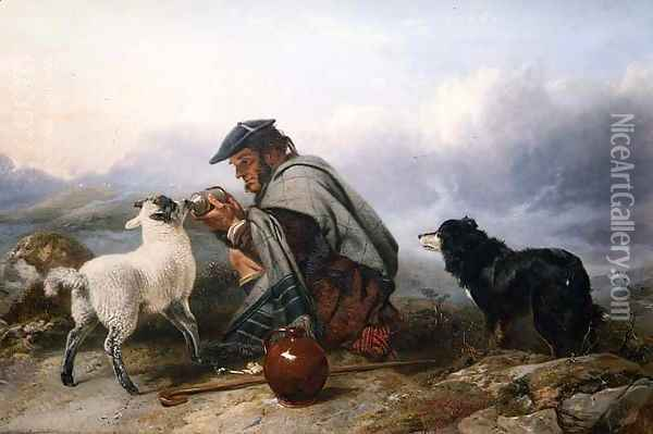 The Sick Lamb, 1853 Oil Painting - Richard Ansdell