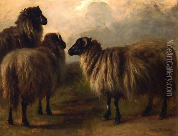 Three Wooly Sheep Oil Painting - Rosa Bonheur