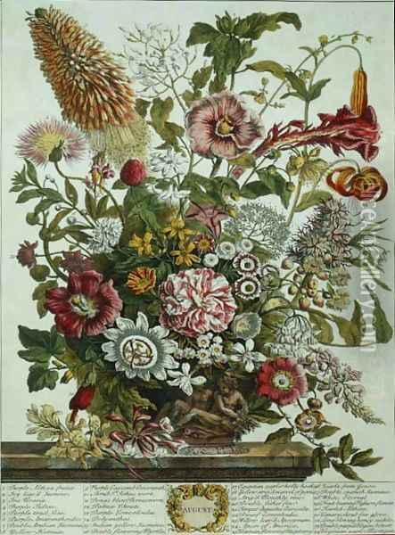 August, from 'Twelve Months of Flowers' Oil Painting - Pieter Casteels