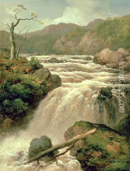 Waterfall on River Neath, South Wales Oil Painting - James Burrell-Smith