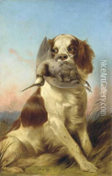 A Spaniel With A Woodcock At Sunset Oil Painting - Richard Ansdell