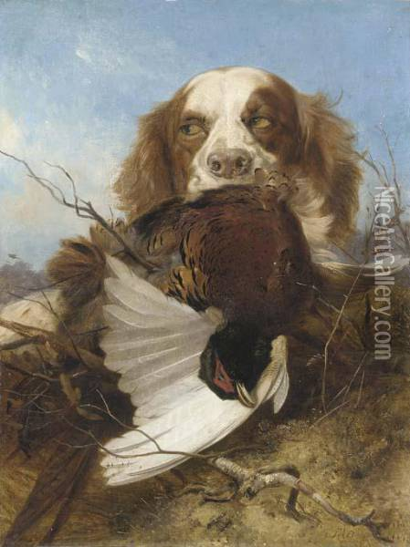 An English Setter With A Pheasant Oil Painting - Richard Ansdell