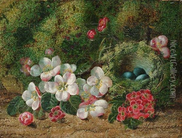 Still Life Of Fruit On A Mossy 