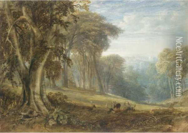 View Of Arundel Castle From Arundel Park, West Sussex Oil Painting - Anthony Vandyke Copley Fielding