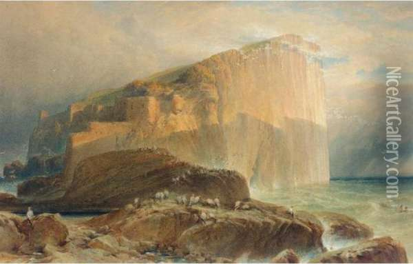 The Bass Rock Oil Painting - William Leighton Leitch