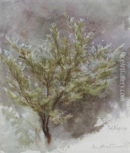 A Sapling In An Autumn Wind Oil Painting - Helen Mary Elizabeth Allingham