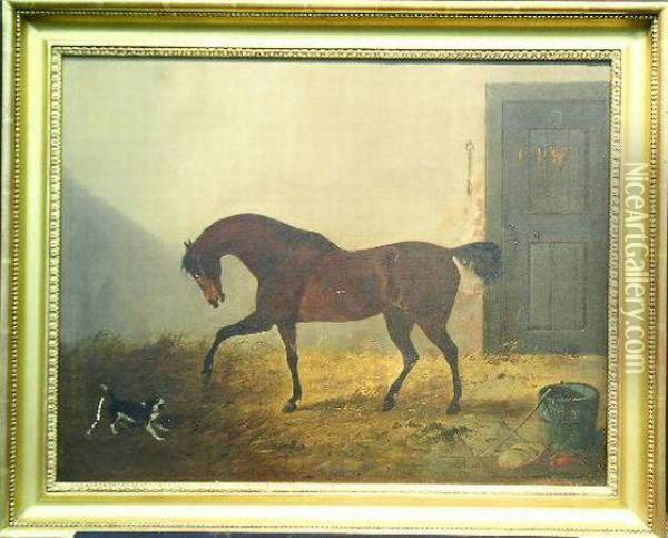Bay Hunter And Spaniel In A Stable Oil Painting - Richard Ansdell