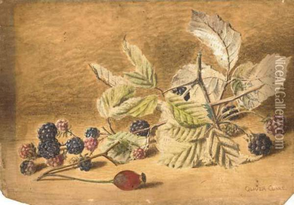 A Study Of Blackberries And A Rose-hip Oil Painting - Oliver Clare